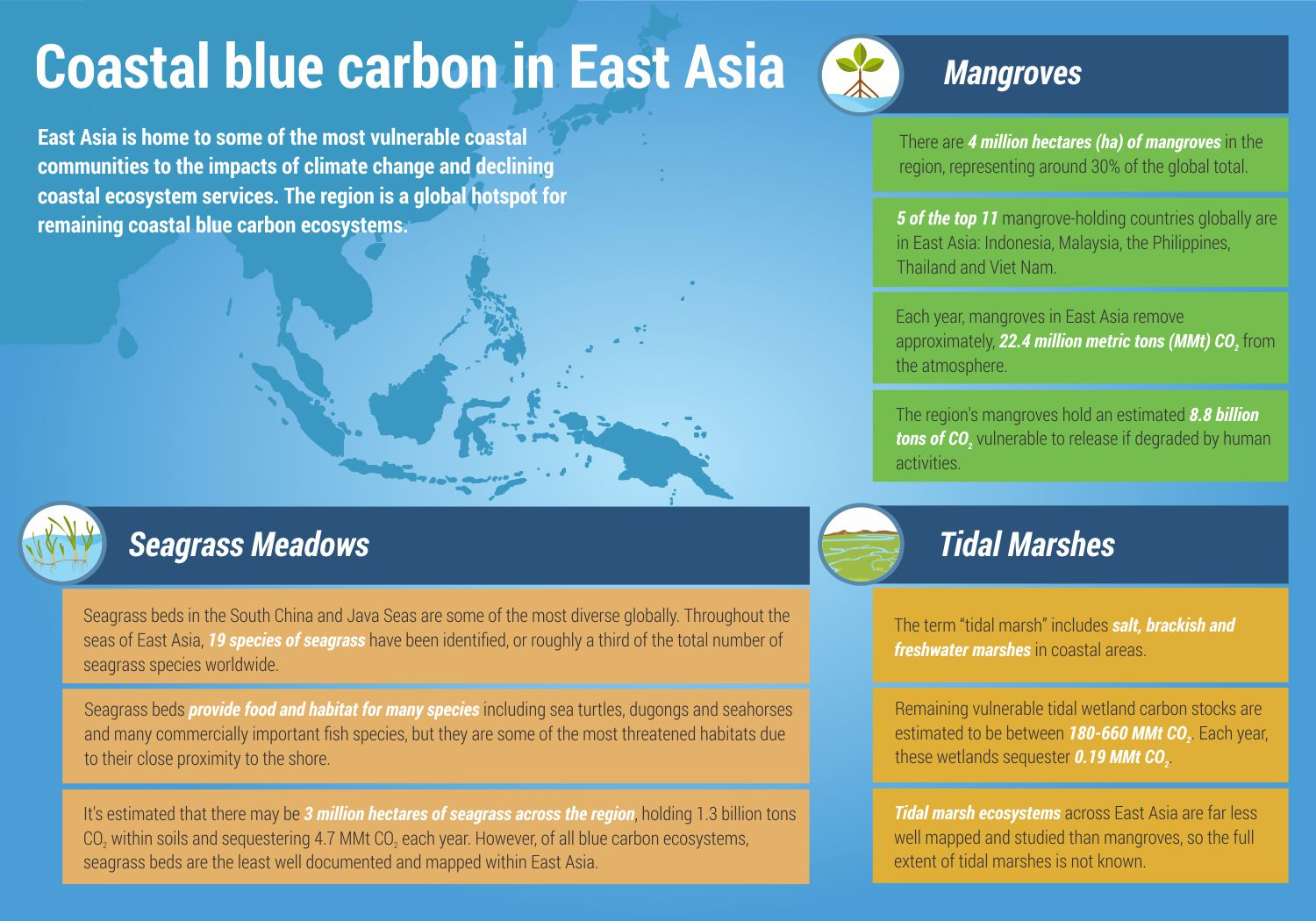 Let's talk about blue carbon solutions