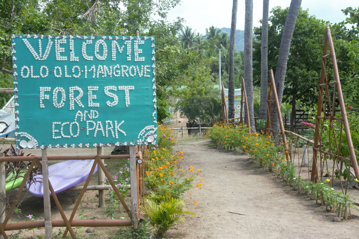 Olo-olo Mangrove Forest and EcoPark: A green space in small Batangas town